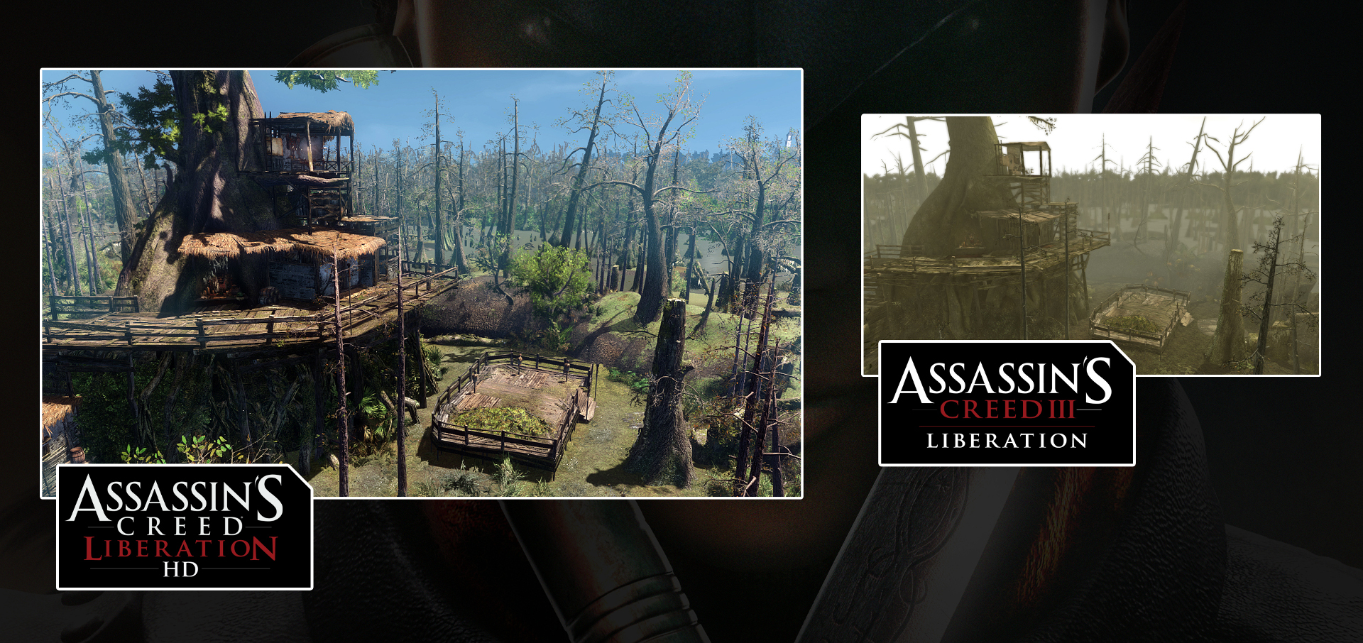 Assassins-Creed-Liberation-HD-vs-Vita-Bayou